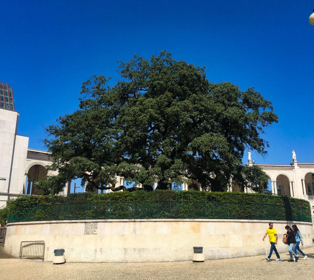 Santuário de Fátima - Roteiro na Mâo