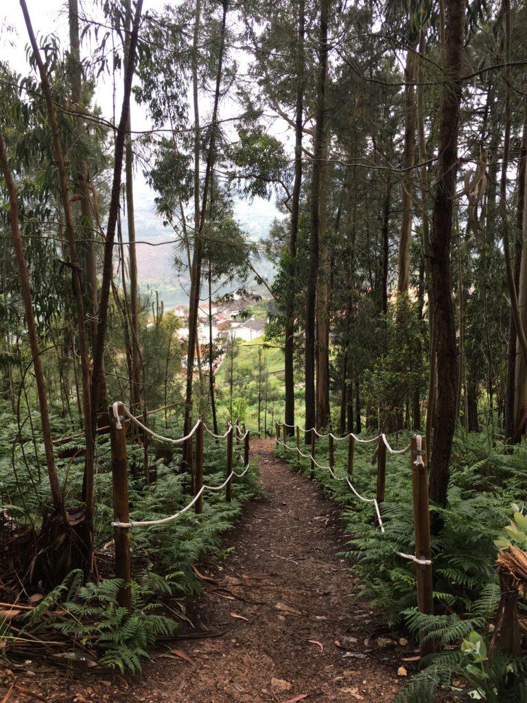 Serra da Boneca